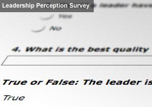 Leadership Perception Survey