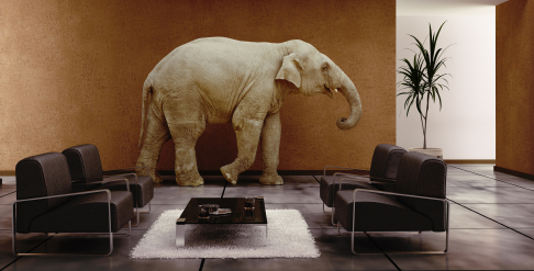 Sometimes the Leader Must Address the Elephant in the Room – Ron ...